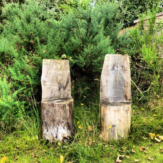 One- the Park-Findhorn Foundation, September w012