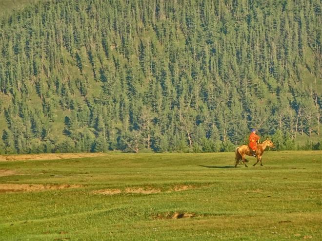 cavallo-cavaliere-ed-infinito-dsc00704_2