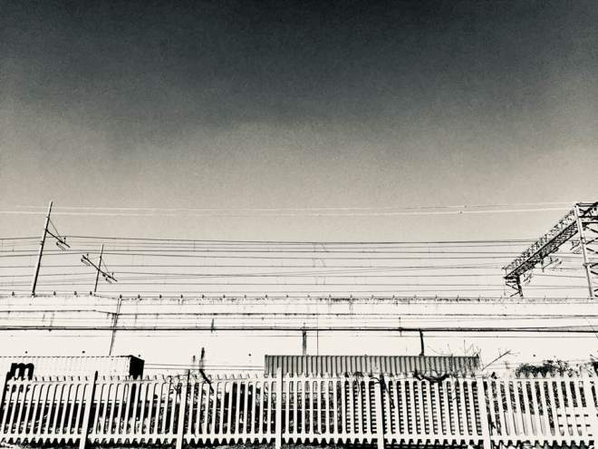NPAL - foto via Corelli